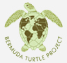 Bermuda Turtle Project